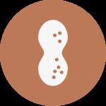 cacahuets